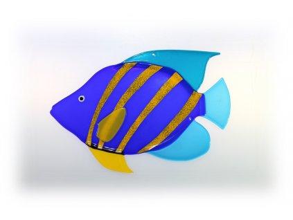 Ryba skleněná 2