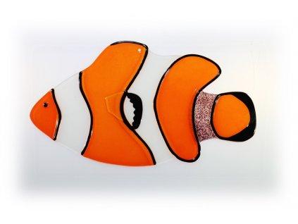 Ryba skleněná 4