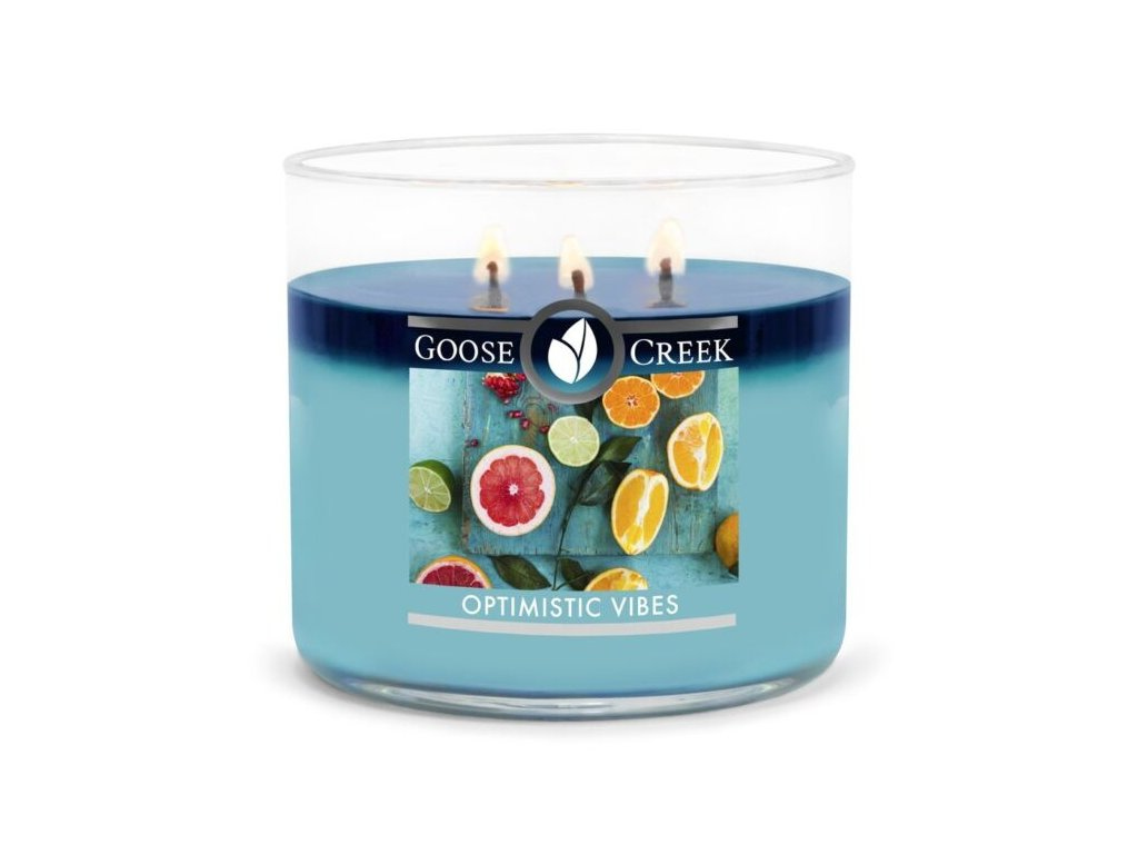cdn.shopify.com s files 1 0016 9092 7179 products Optimistic Vibes 3 wick candle 5b56b851 0a0f 4859 b22b d4a8ffc1013d 1024x1024.jpg?v=1580142437