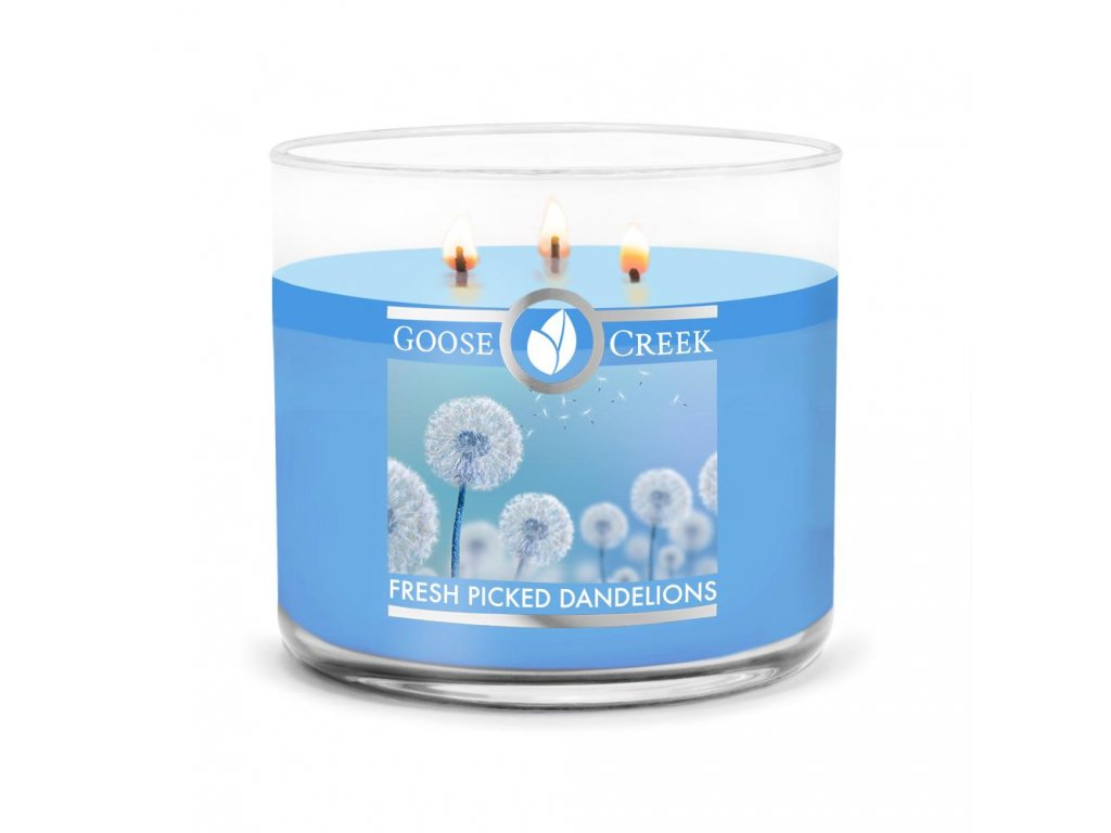 Fresh Picked Dandelions Large 3 Wick Candle 1024x1024