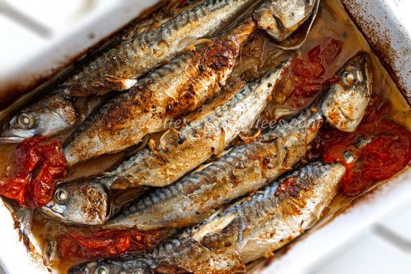 makrela s arganovým olejem