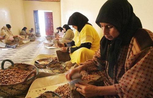marocké ženy pracující na výrobé arganového oleje