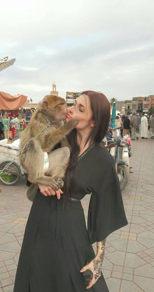 opice v Marrakéši