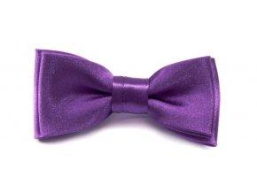 Mini motýlek Avantgard - fialový