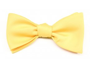 Vázací motýlek s kapesníčkem Avantgard - žlutý matný