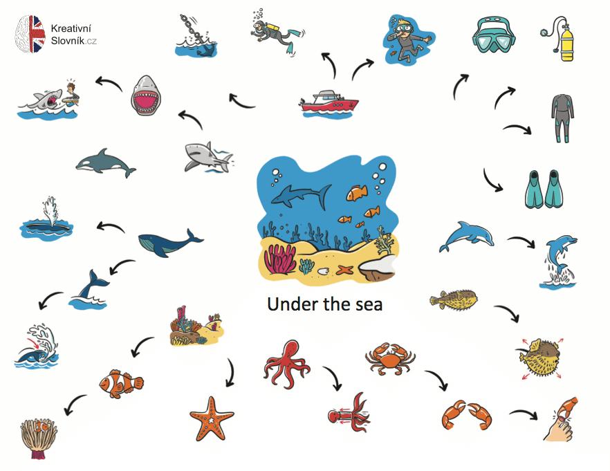 Ukázka kreativního slovníku - podmořský svět