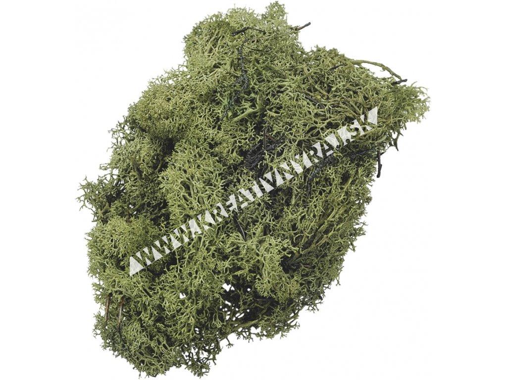 mach zelený