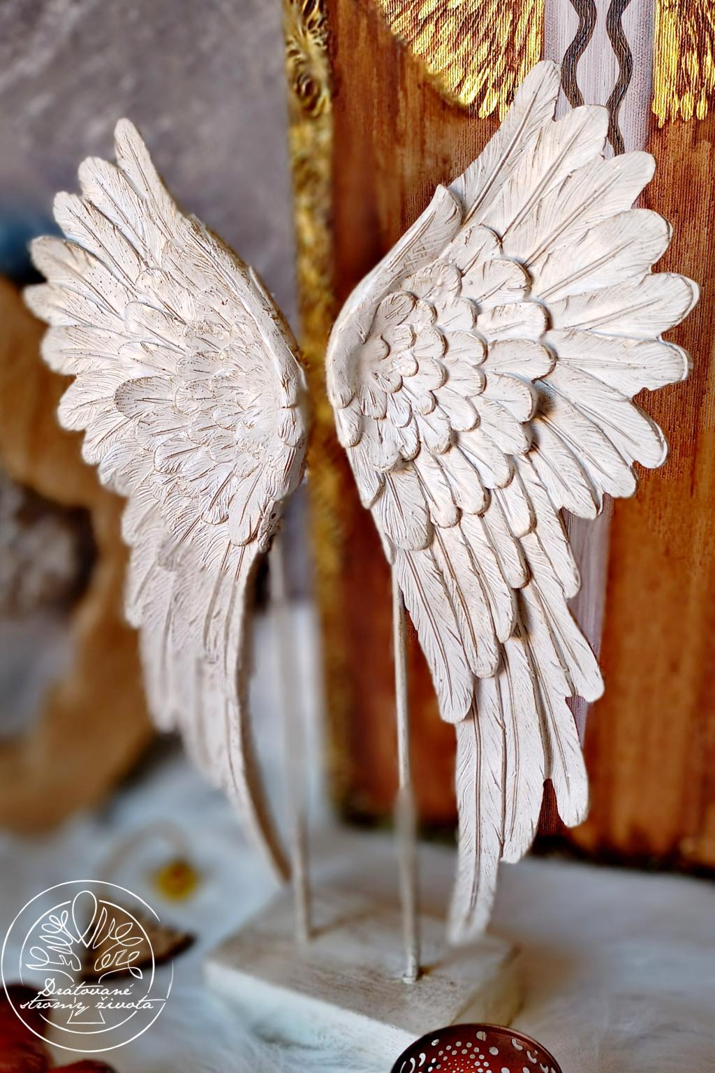 Andělská křídla  - Čistá duše 38cm