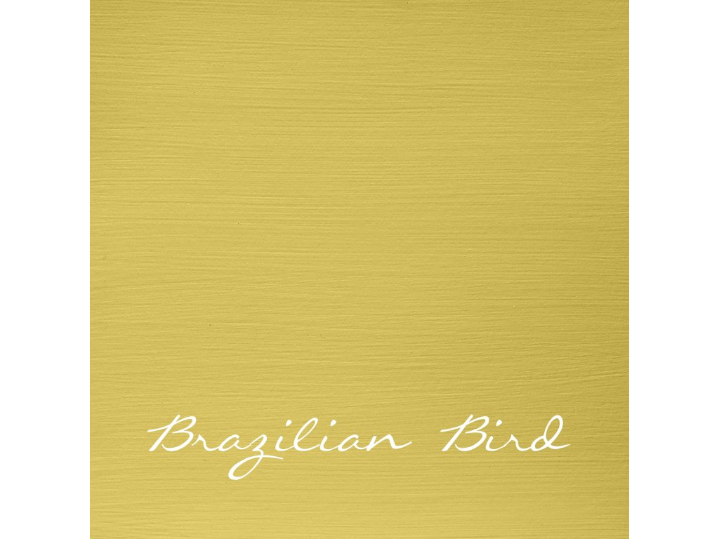 150 Brazilian bird 2048x