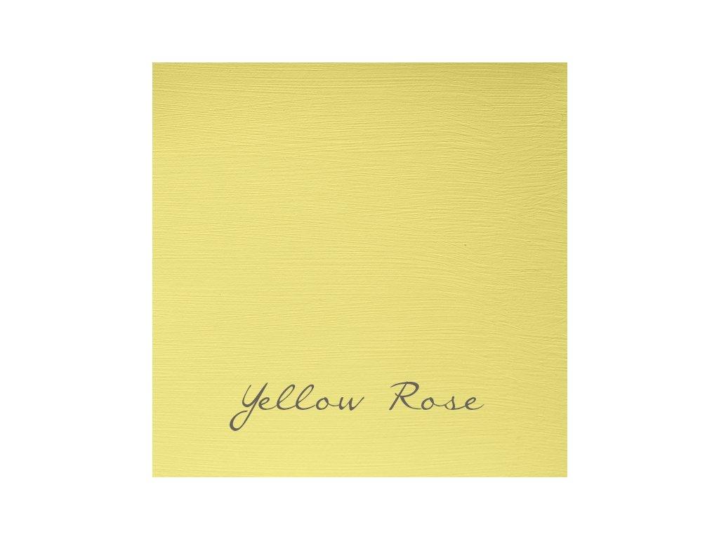 159 Yellow Rose 2048x