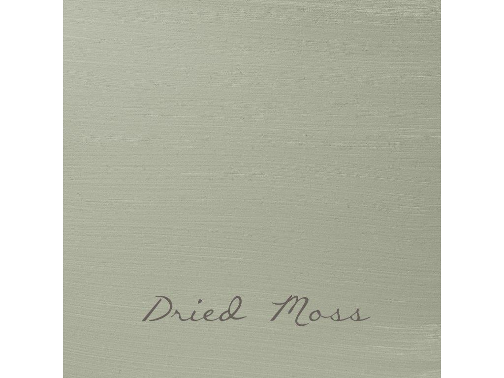 80 Dried Moss 2048x