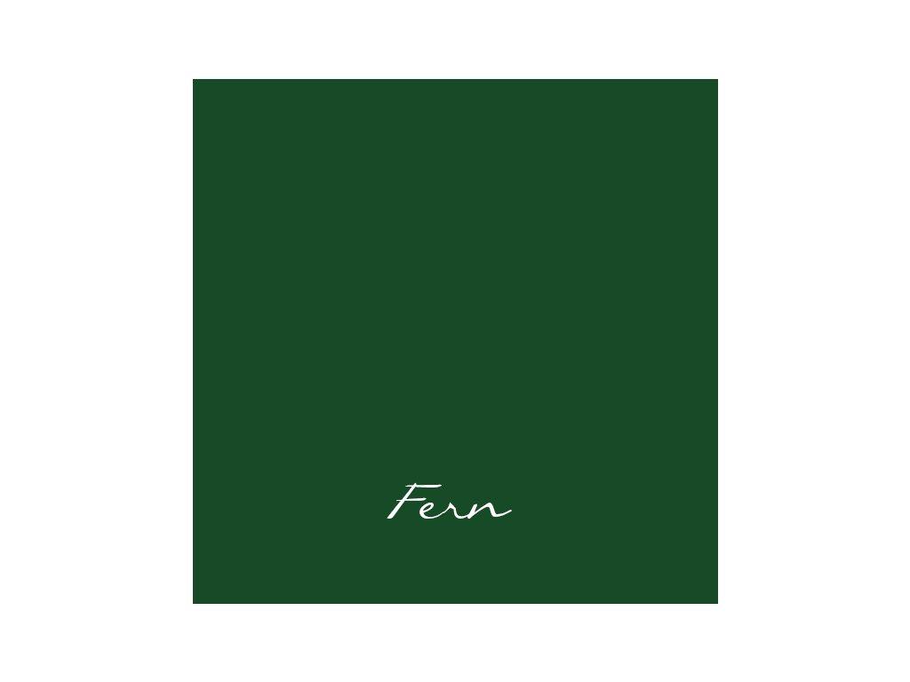 156 Fern 2048x