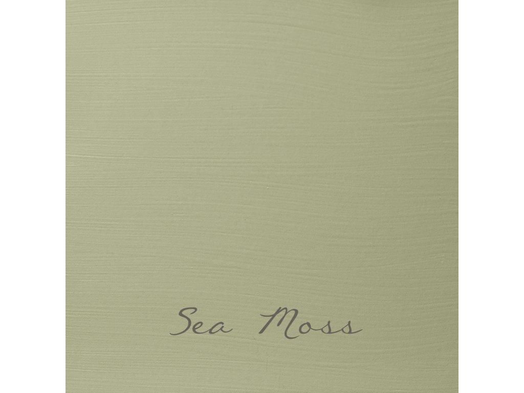 154 Sea Moss 2048x