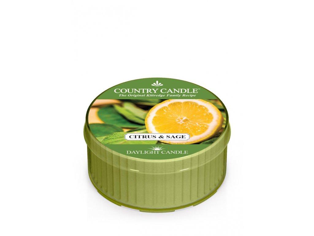 COUNTRY CANDLE Citrus & Sage vonná sviečka (35 g)