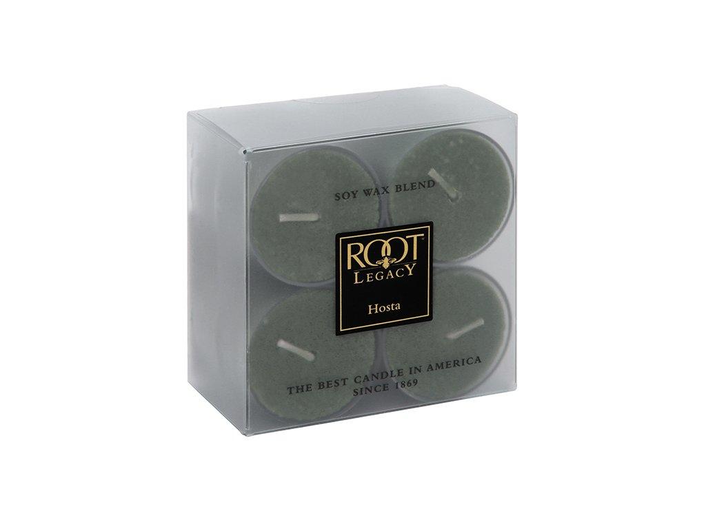 ROOT CANDLES Tea Lights Hosta