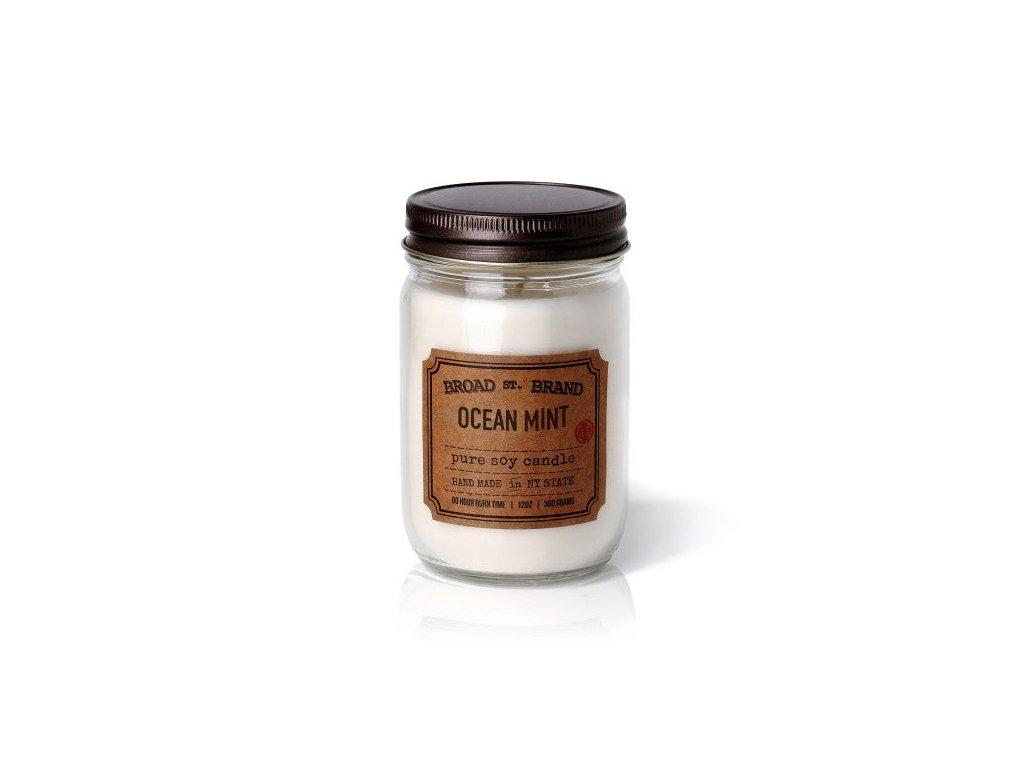 Ocean Mint 600x600