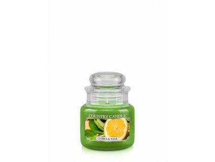 COUNTRY CANDLE Citrus & Sage vonná sviečka mini 1-knôtová (104 g)