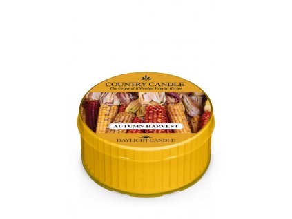 COUNTRY CANDLE Autumn Harvest vonná sviečka (35 g)