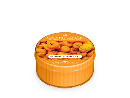 COUNTRY CANDLE Pumpkin Harvest vonná sviečka (35 g)