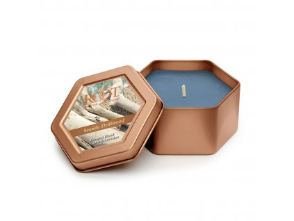 ROOT CANDLES Travel Tin Seaside Driftwood