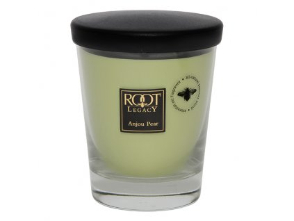 ROOT CANDLES Veriglass Large Anjou Pear