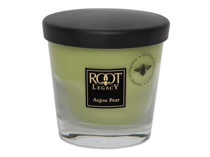 ROOT CANDLES Veriglass small Anjou Pear