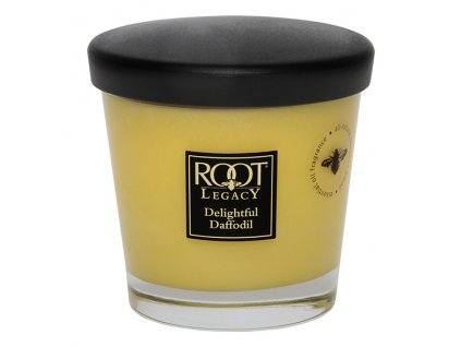 ROOT CANDLES Veriglass small Delightful Daffodil