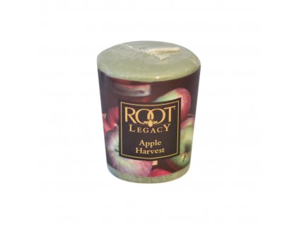 ROOT CANDLES Votivo Anjou Pear