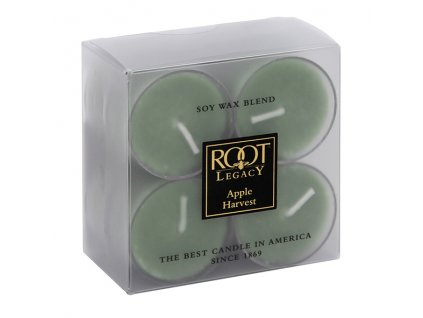 ROOT CANDLES Tea Lights Anjou Pear