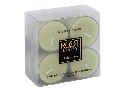 ROOT CANDLES Tea Lights Aple Harvest