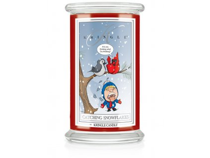 jar 650x875 catching snowflakes
