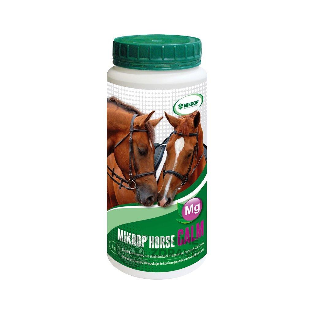 horse calm