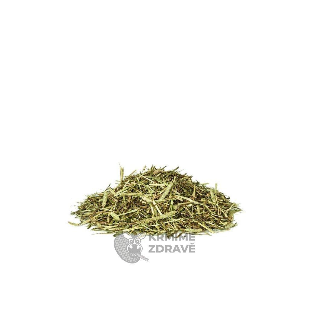 16003263072066 1 derby timotheegrass pur bojínek 2