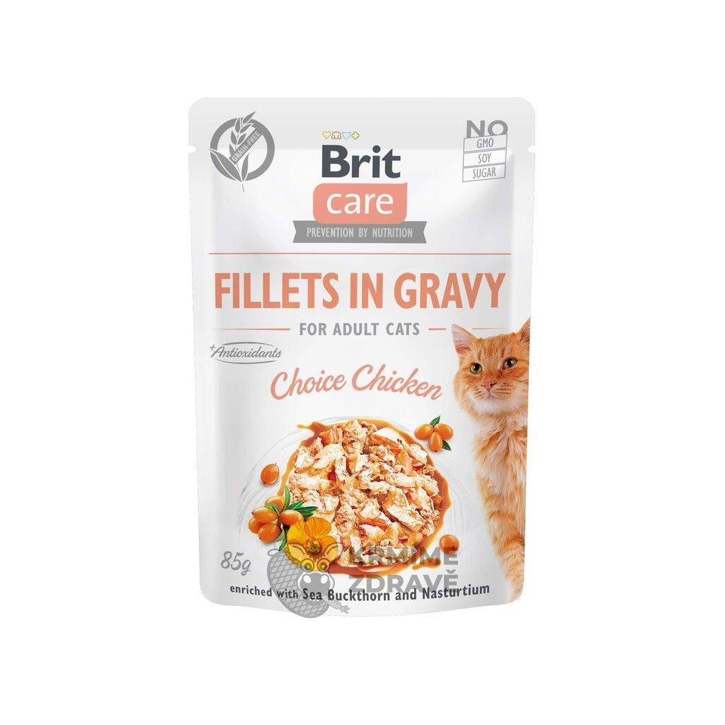 19064 bcc pouch fillets gravy adult choise chicken 3d z1