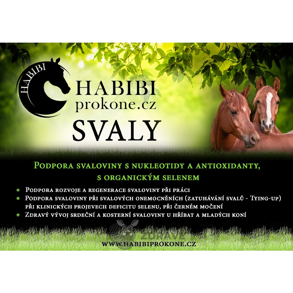 svaly1