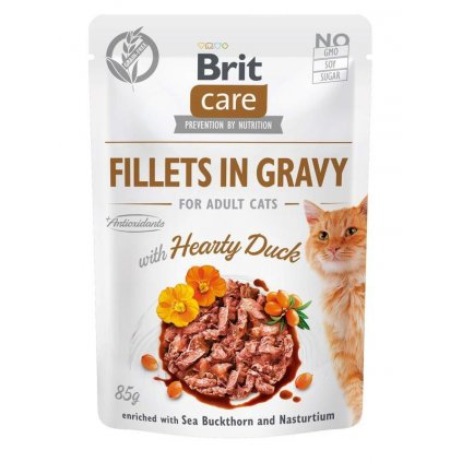19064 bcc pouch fillets gravy with hearty duck 3d kopia z1