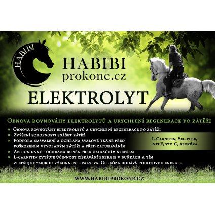 elektrolyt1