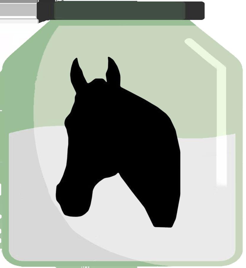 Doplňky stravy pro koně