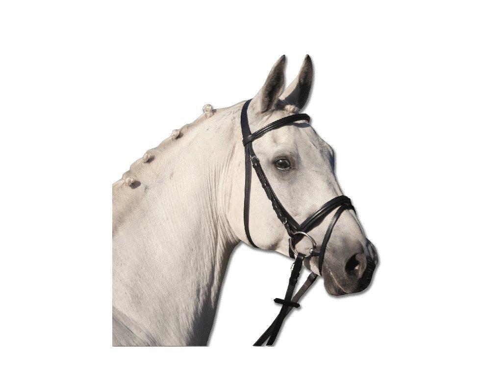 Waldhausen Uzdečka Lifestyle černá pony