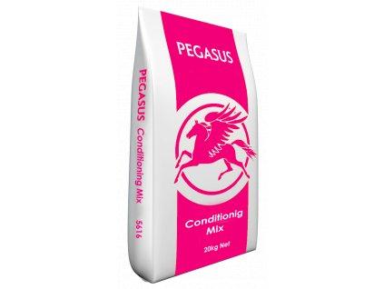pegasus conditioning mix
