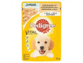 Pedigree Vital Protection JUNIOR 100g