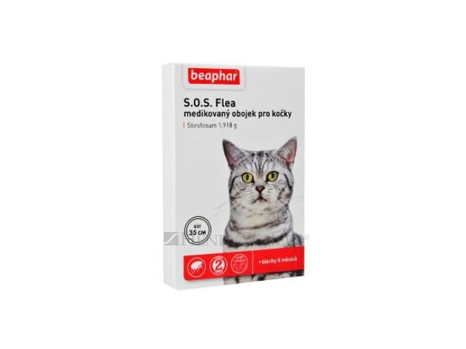 sos kočka