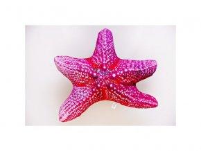 Polštář Hvězdice mořská 50cm