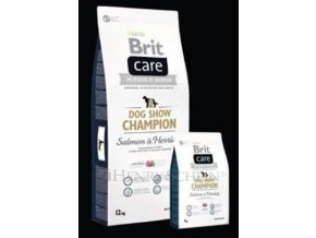Brit Care Champion