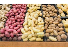 sadbové brambory balené po 5kg