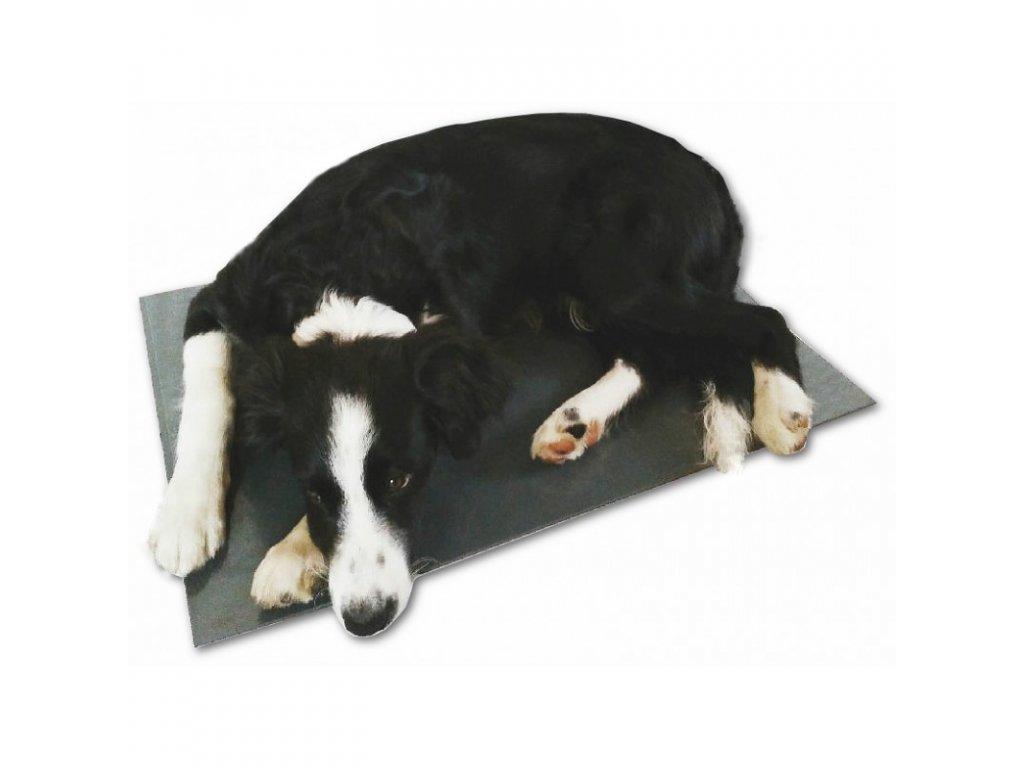11044 vyhrevna deska pro psy podlazka 40 x 60 cm 12 v 20 w pvc napajeni z autozastrcky i site 230 v