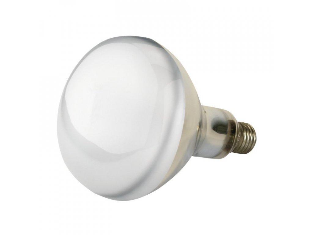 Infražárovka Kerbl EF, bílá, 250 W