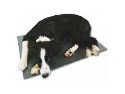 Výhřevná deska pro psy, podlážka 40 x 60 cm, 12 V / 20 W, PVC, napájení z autozástrčky i sítě 230 V
