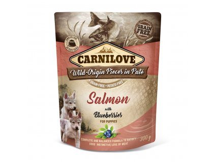 carnilove salmon blueberries