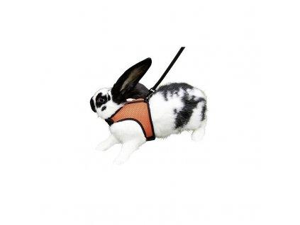 Postroj a vodítko pro králíka SPORT